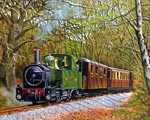 Welshpool and Llanfair Railway'